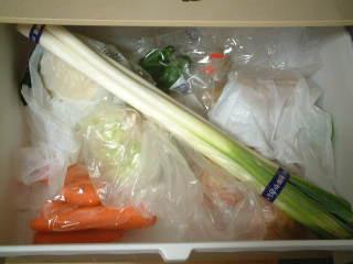 野菜室(実施前)