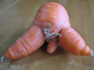 セクシー野菜(人参)毛が生えた