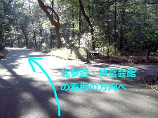 明治神宮の舗装ルート2