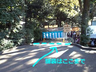 明治神宮の舗装ルート(東神門付近)