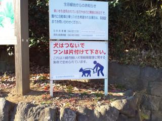 犬の糞を片付けるピクトグラム