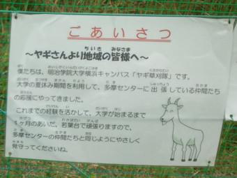 ヤギの除草実験の告知3
