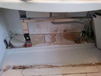 浴槽エプロン内のカビ2