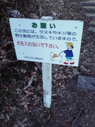 「犬を入れないでください」の看板