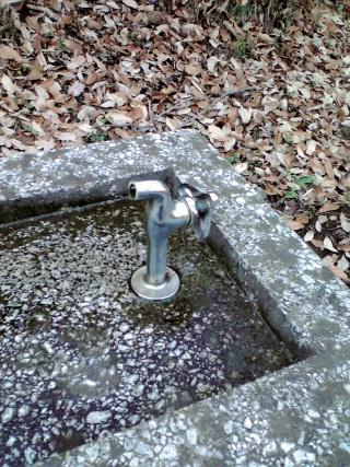 変な水飲み場の蛇口