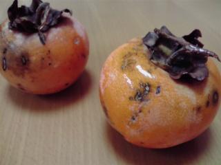 禅寺丸柿まつりで購入した「禅寺丸柿」