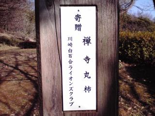 王禅寺ふるさと公園の禅寺丸柿の看板