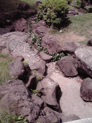 王禅寺ふるさと公園の小川の水が干上がっている2
