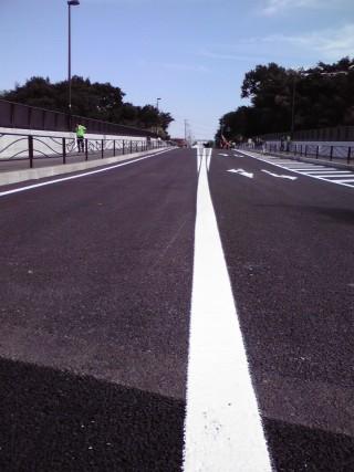 柿生大橋の車道を歩いて渡るイベント(中央線の上)