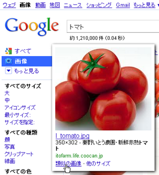 グーグル「類似の画像」検索