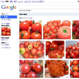 「たくさんのトマト」画像をクエリにした検索結果