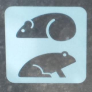 ネズミとカエルのピクトグラム