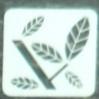 木の葉のピクトグラム