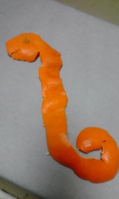 オフロスキーがみかんで作ったヘビ